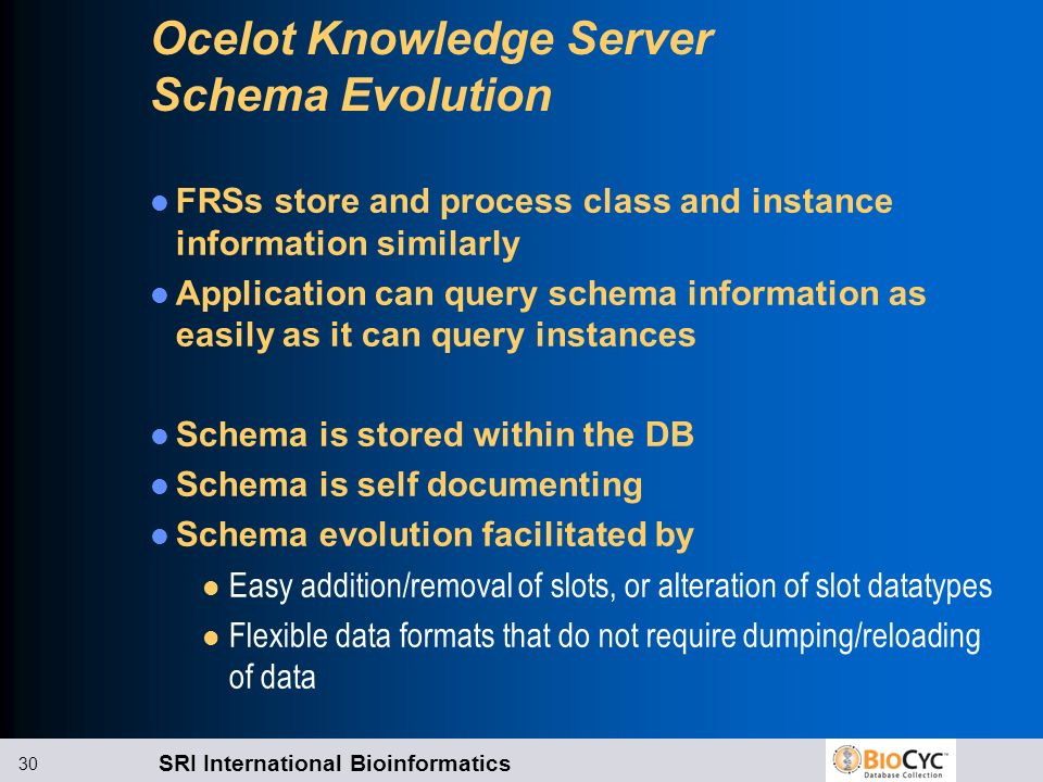 Ocelot Knowledge Server Schema Evolution