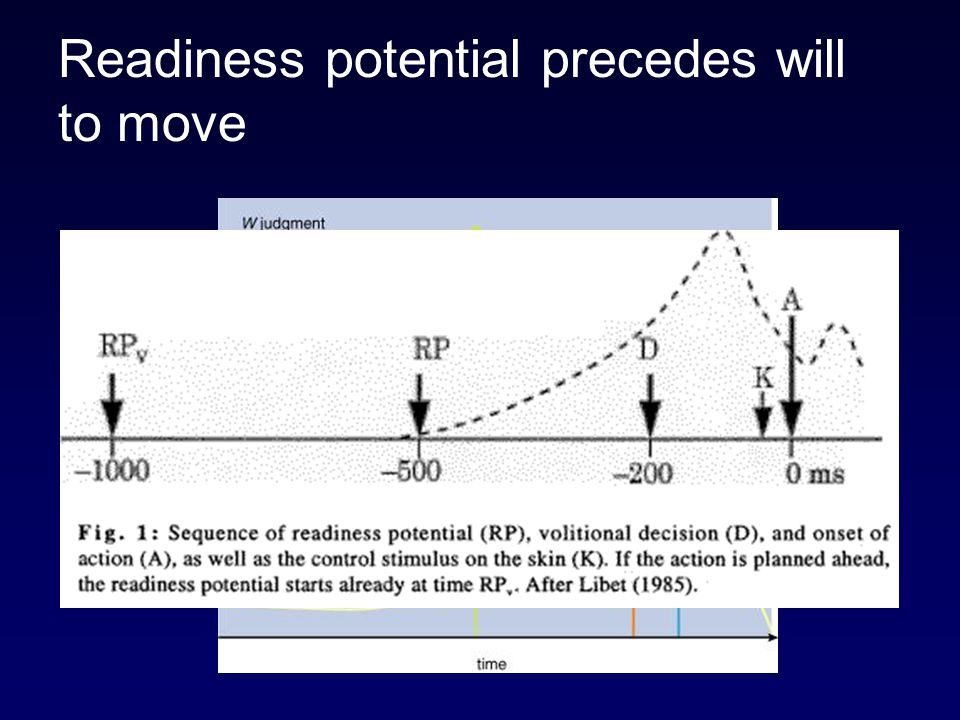 Readiness potential precedes will to move