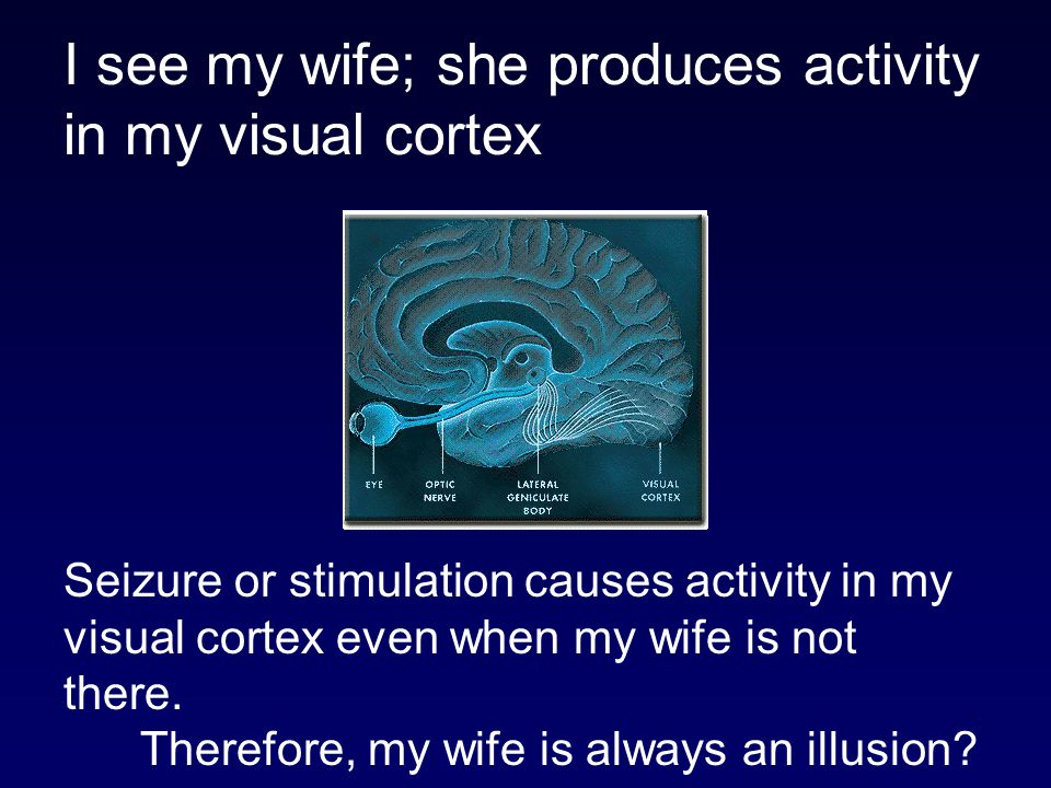I see my wife; she produces activity in my visual cortex