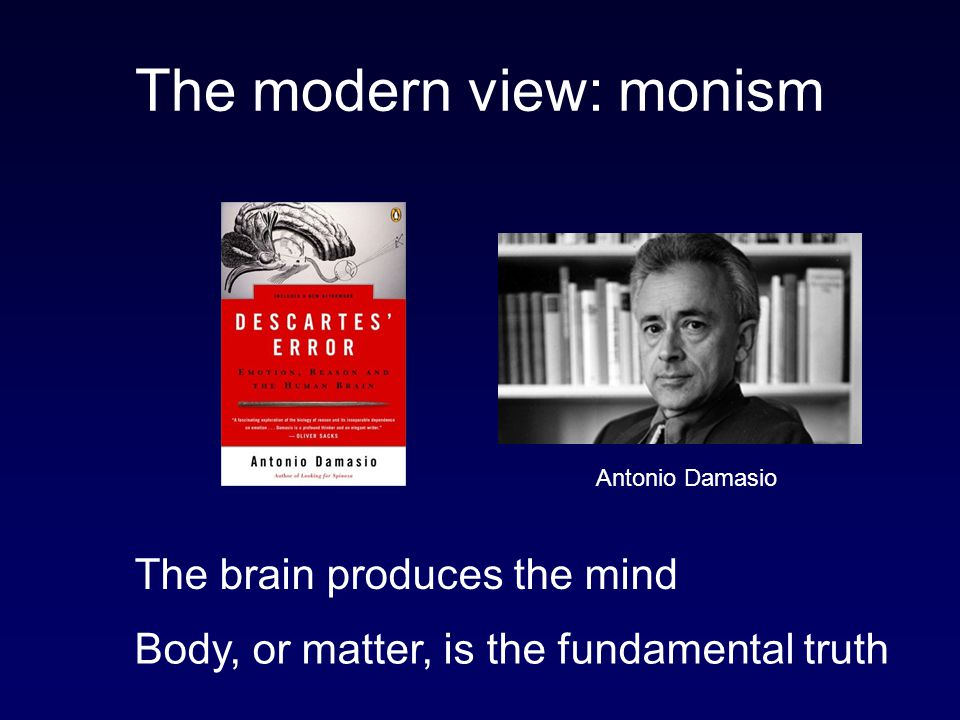 The modern view: monism
