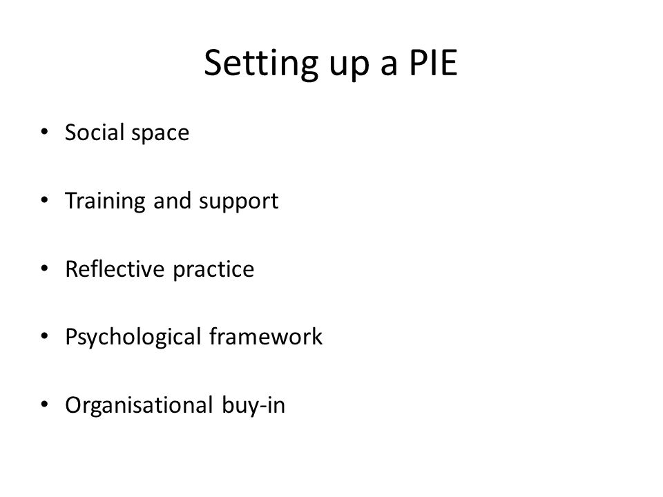 Setting up a PIE Social space Training and support Reflective practice