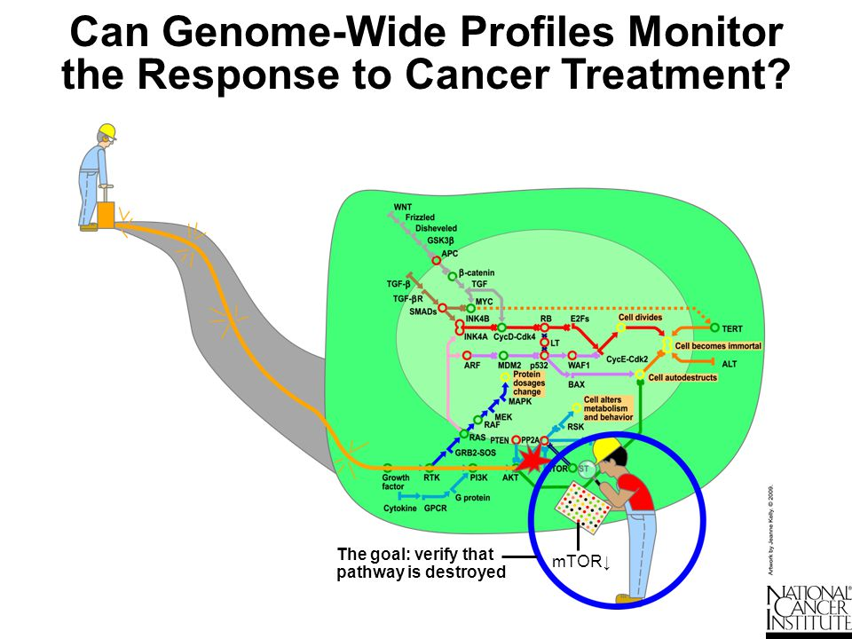 Can Genome-Wide Profiles Monitor the Response to Cancer Treatment
