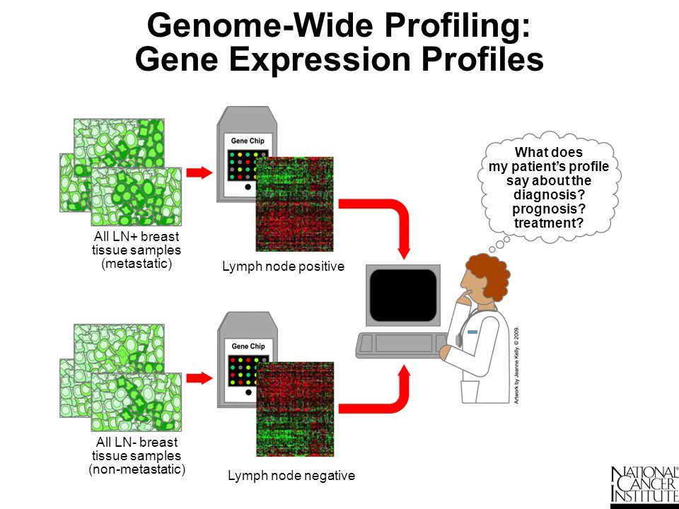 Genome-Wide Profiling: Gene Expression Profiles