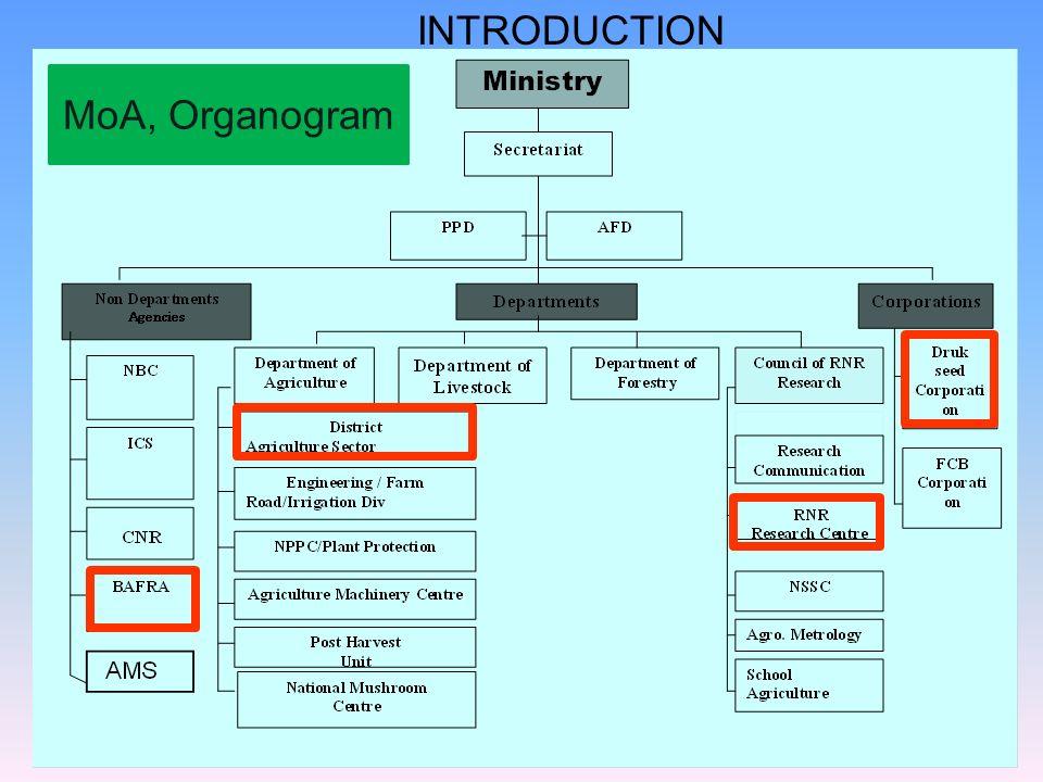 INTRODUCTION MoA, Organogram