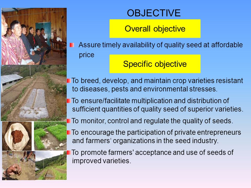 OBJECTIVE Overall objective Specific objective