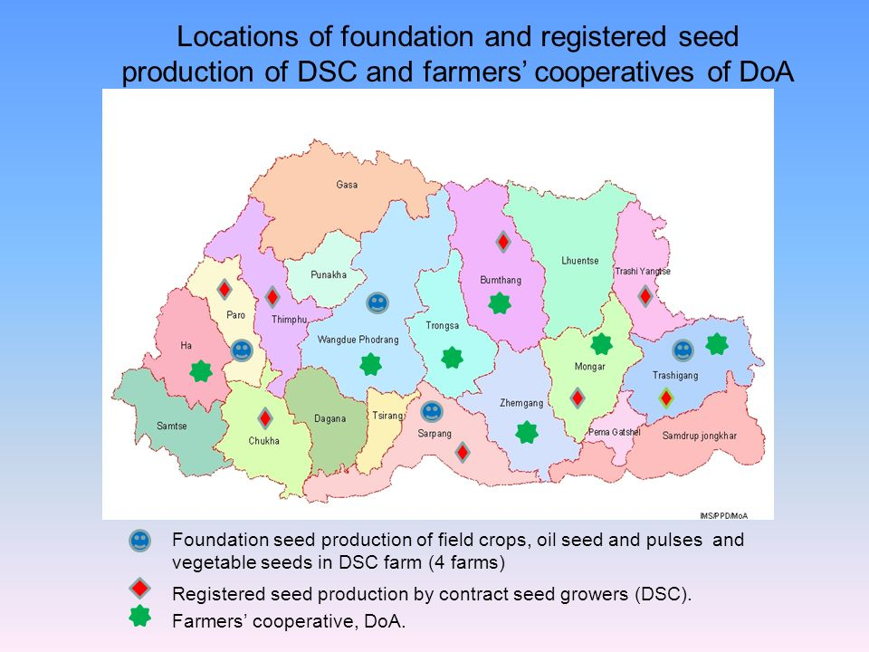 Locations of foundation and registered seed production of DSC and farmers' cooperatives of DoA