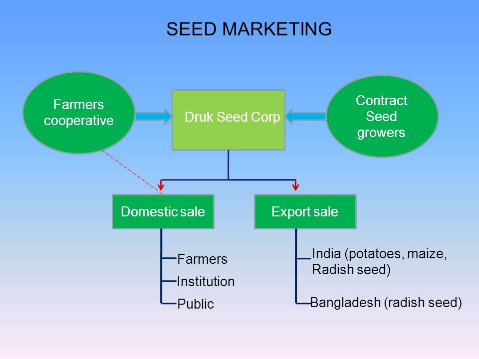 SEED MARKETING Farmers cooperative Contract Seed growers
