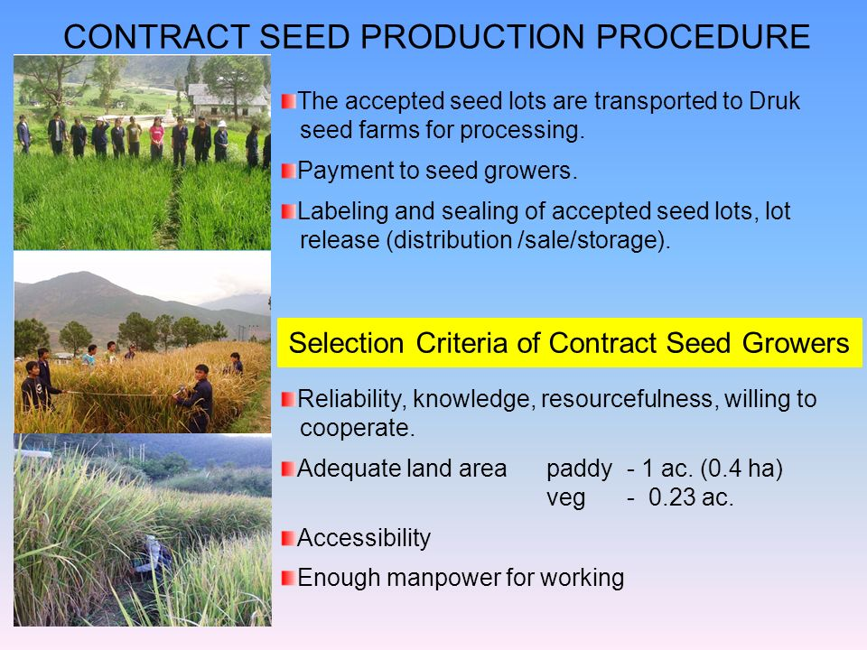 Selection Criteria of Contract Seed Growers