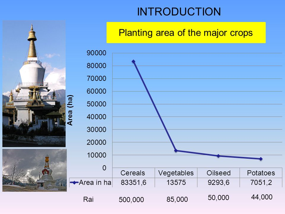 Planting area of the major crops