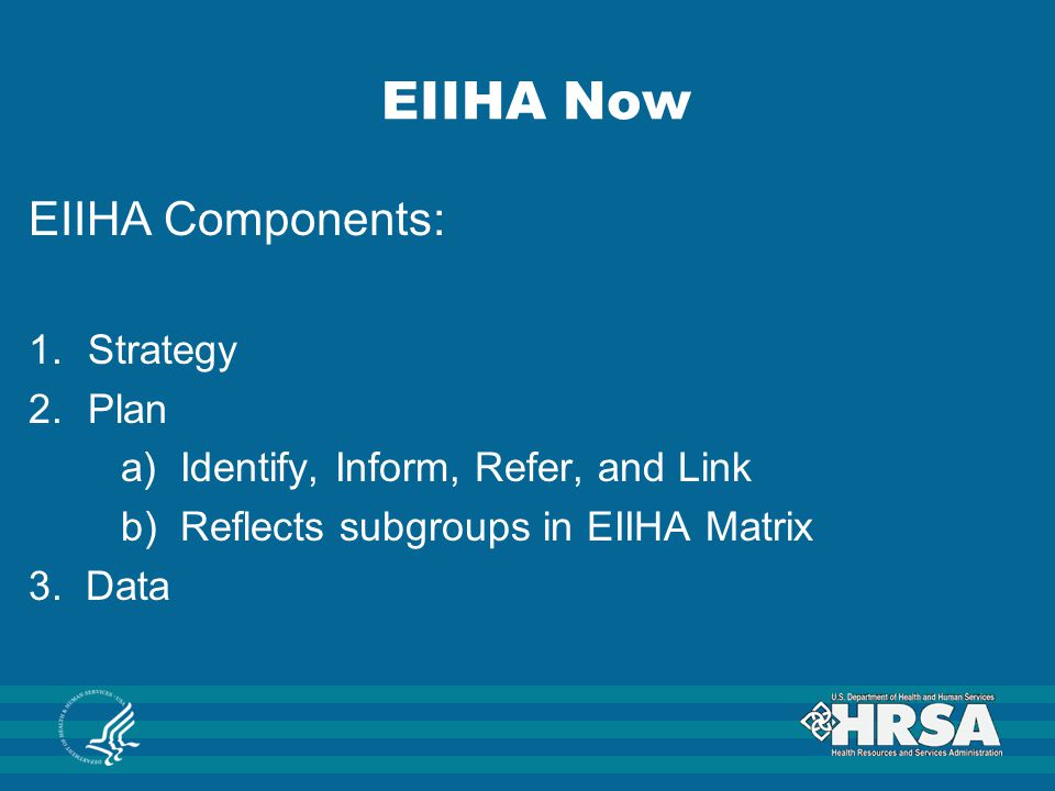 EIIHA Now EIIHA Components: Strategy Plan