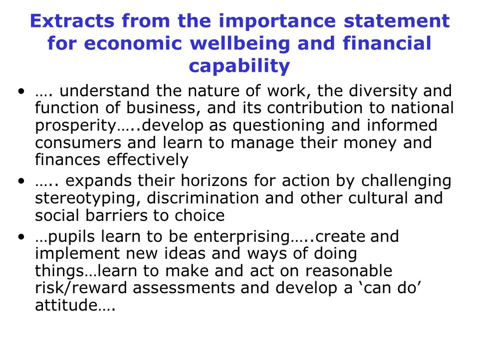 Extracts from the importance statement for economic wellbeing and financial capability