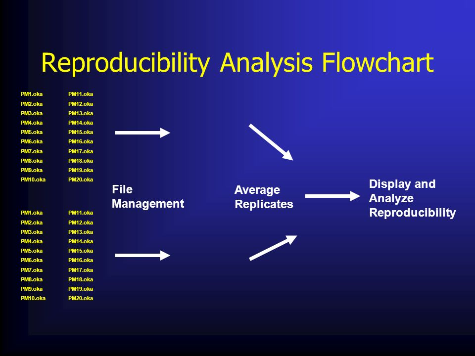 Reproducibility Analysis Flowchart
