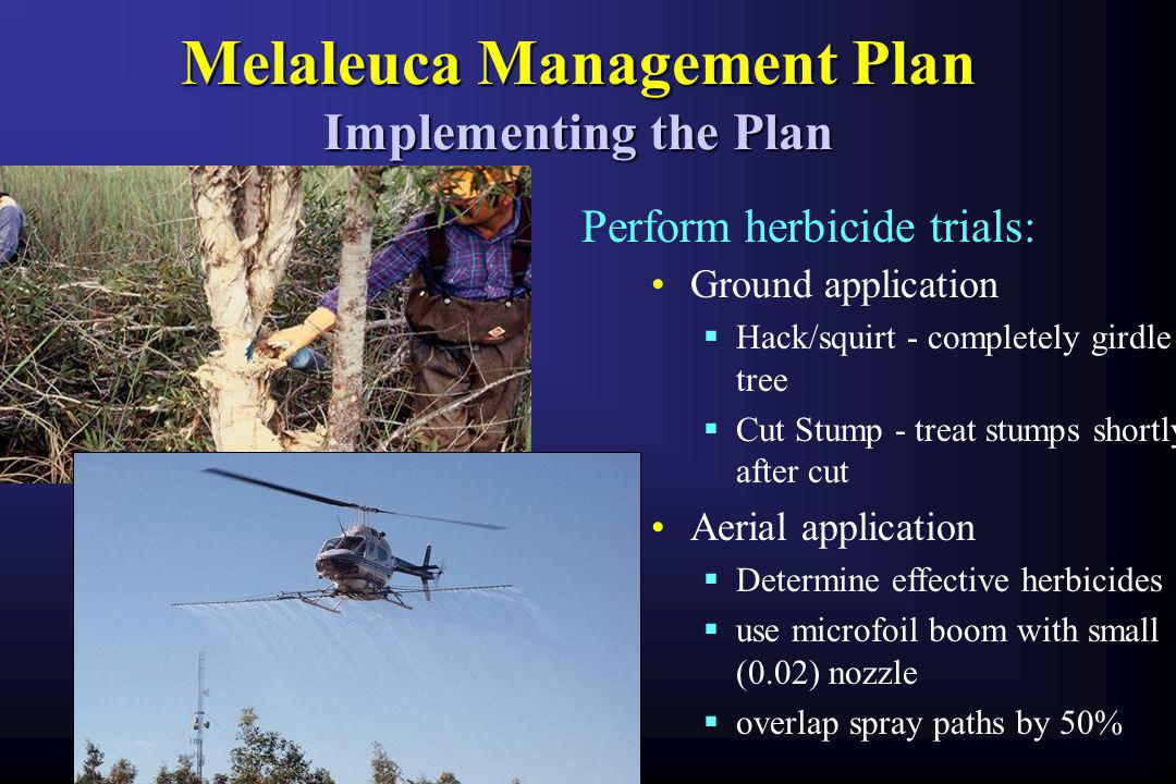 Melaleuca Management Plan Implementing the Plan