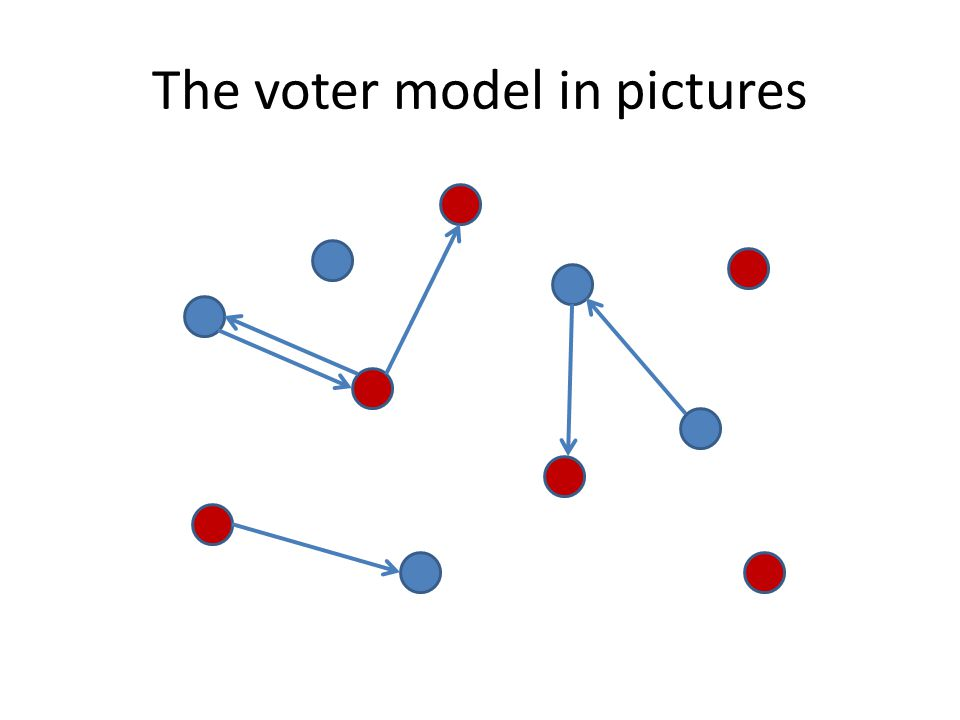 The voter model in pictures