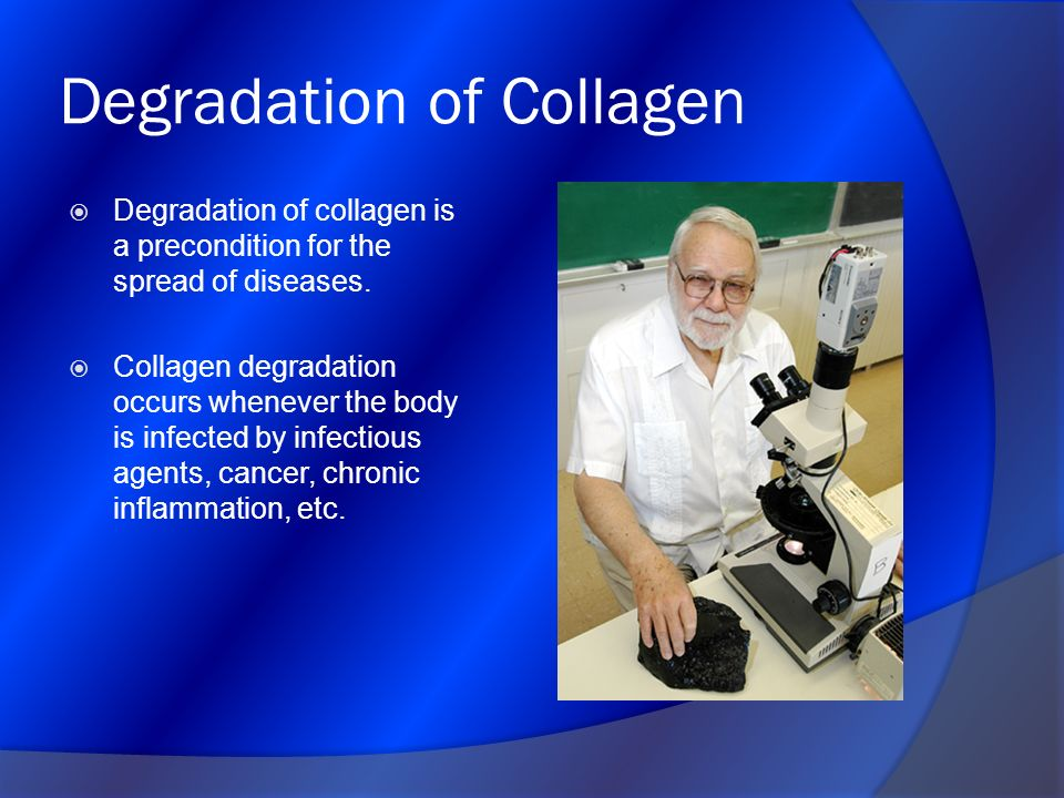 Degradation of Collagen
