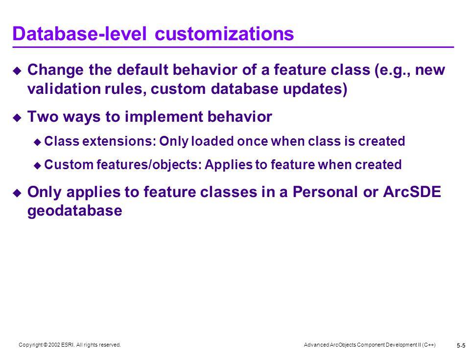 Database-level customizations