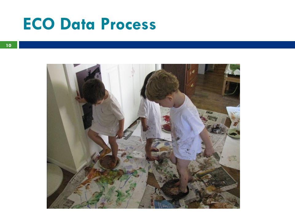ECO Data Process