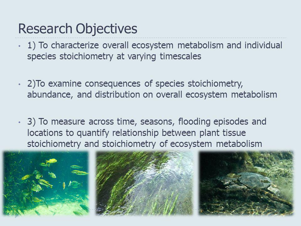 Research Objectives 1) To characterize overall ecosystem metabolism and individual species stoichiometry at varying timescales.