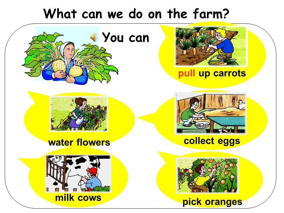 What can we do on the farm