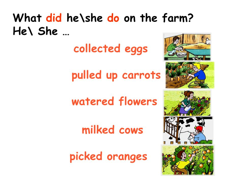 What did he\she do on the farm