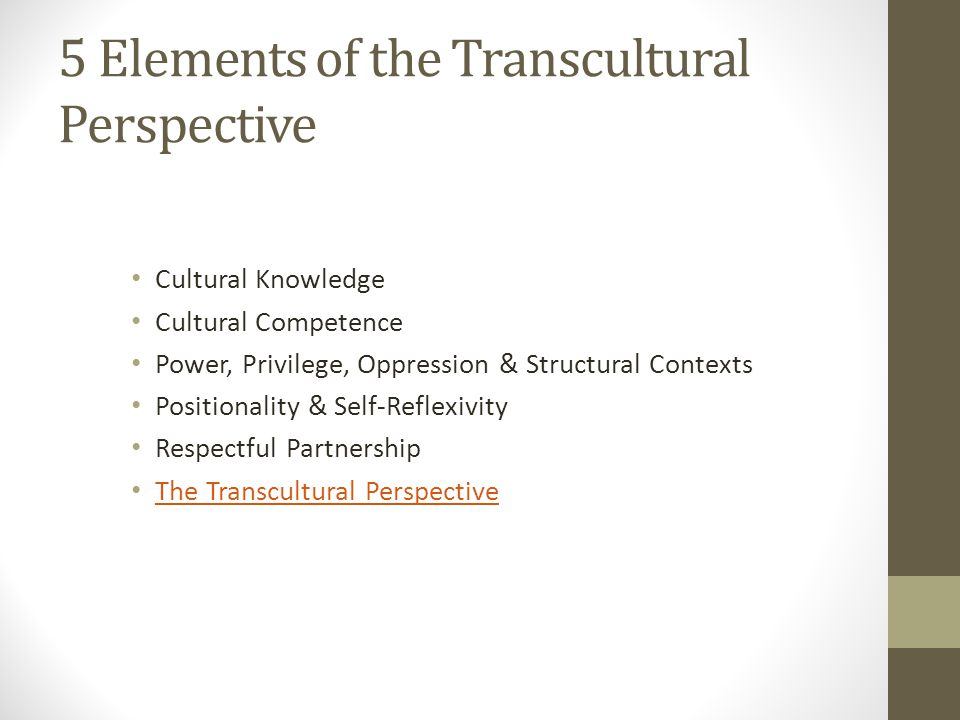 5 Elements of the Transcultural Perspective