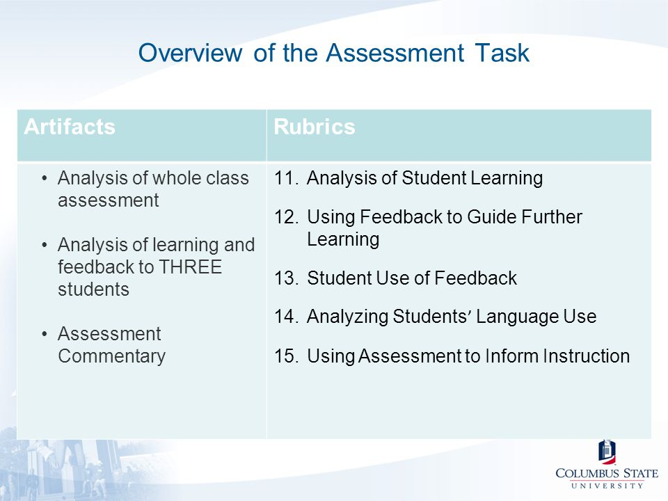 Overview of the Assessment Task