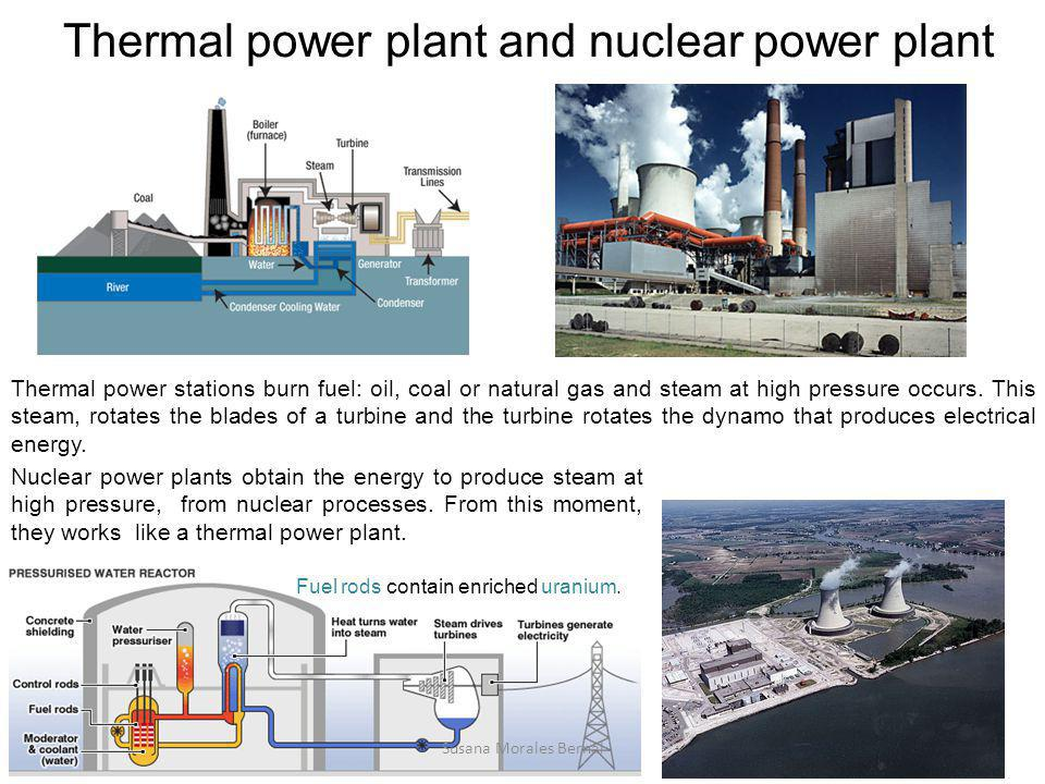 Thermal power plant and nuclear power plant