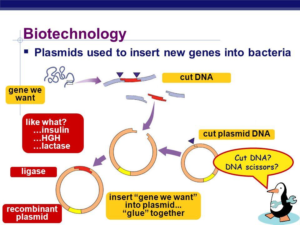 insert gene we want into plasmid... glue together