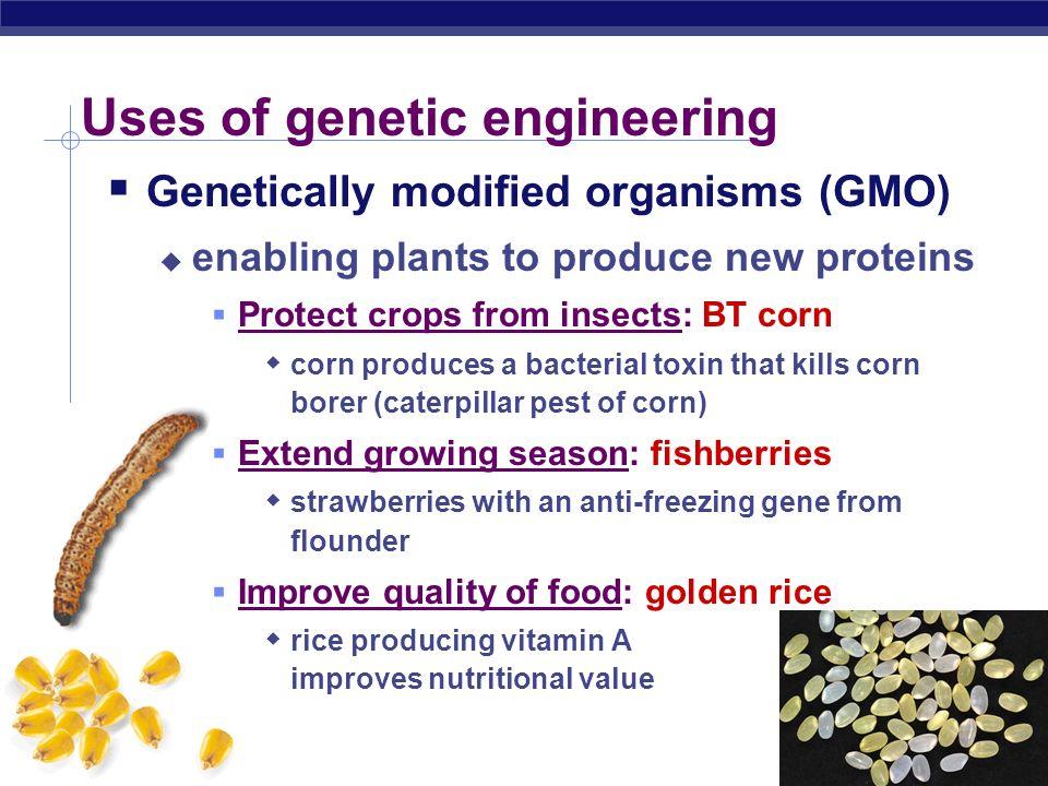 Uses of genetic engineering