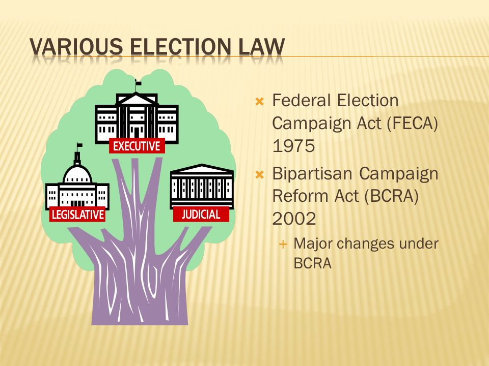 Various Election Law Federal Election Campaign Act (FECA) 1975