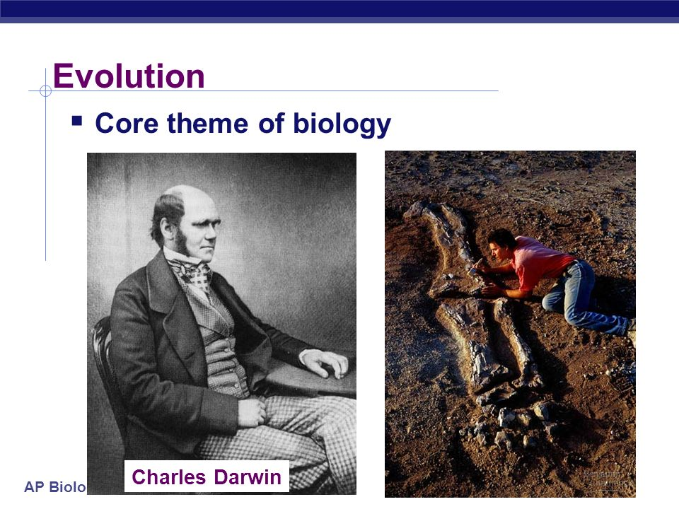 Evolution Core theme of biology Charles Darwin 2005-2006