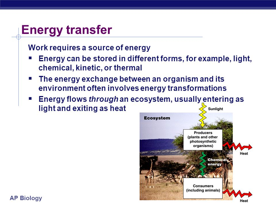 Energy transfer Work requires a source of energy