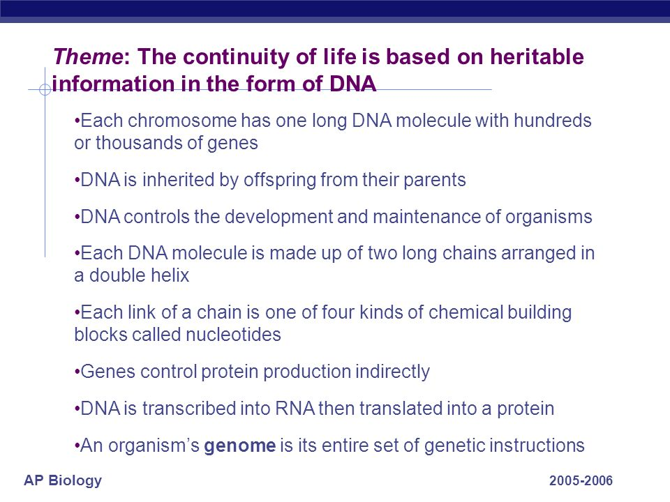 Theme: The continuity of life is based on heritable information in the form of DNA