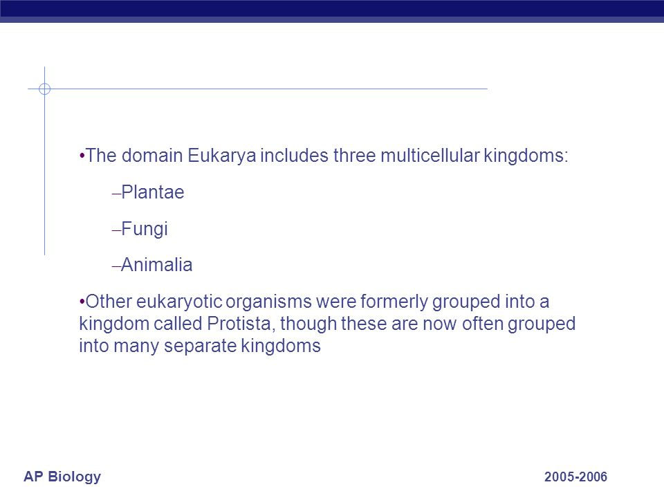 The domain Eukarya includes three multicellular kingdoms: Plantae