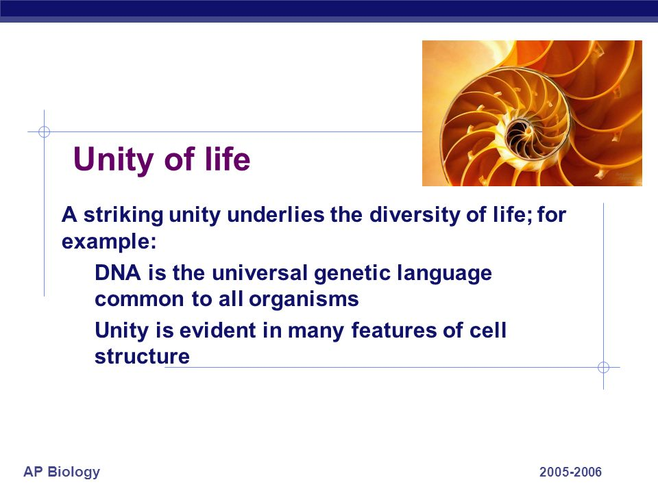 Unity of life A striking unity underlies the diversity of life; for example: DNA is the universal genetic language common to all organisms.