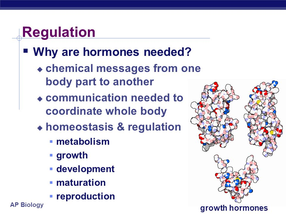 Regulation Why are hormones needed