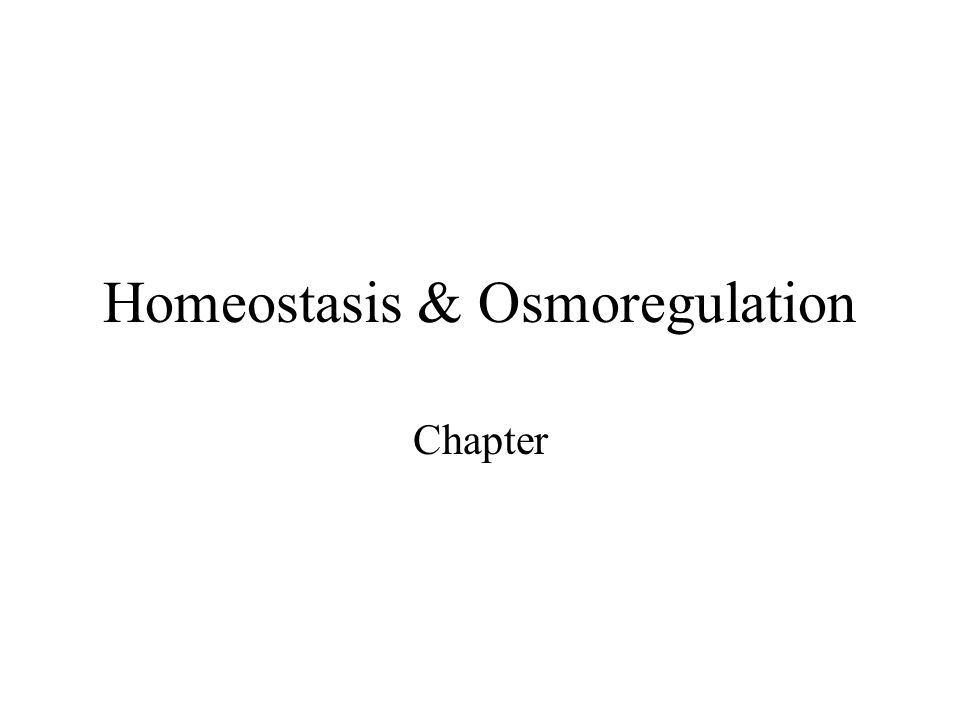 Homeostasis & Osmoregulation