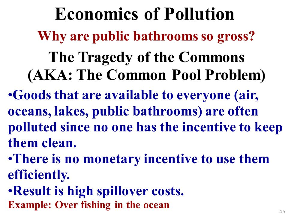 Economics of Pollution