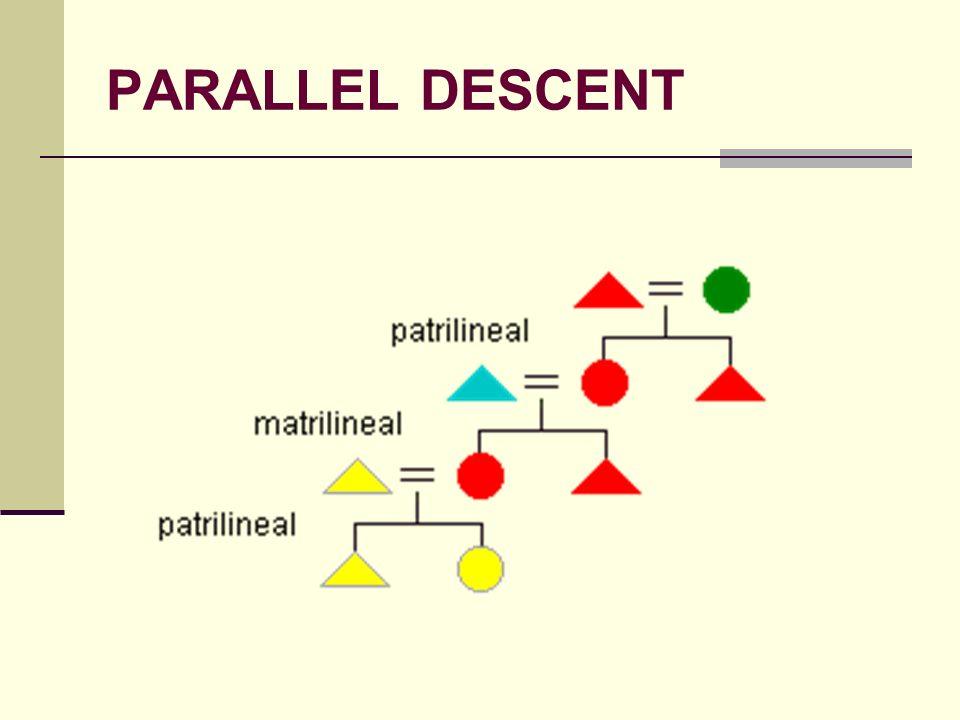 PARALLEL DESCENT