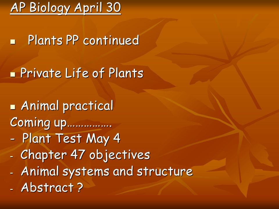 AP Biology April 30Plants PP continued. Private Life of Plants. Animal practical. Coming up……………. - Plant Test May 4.