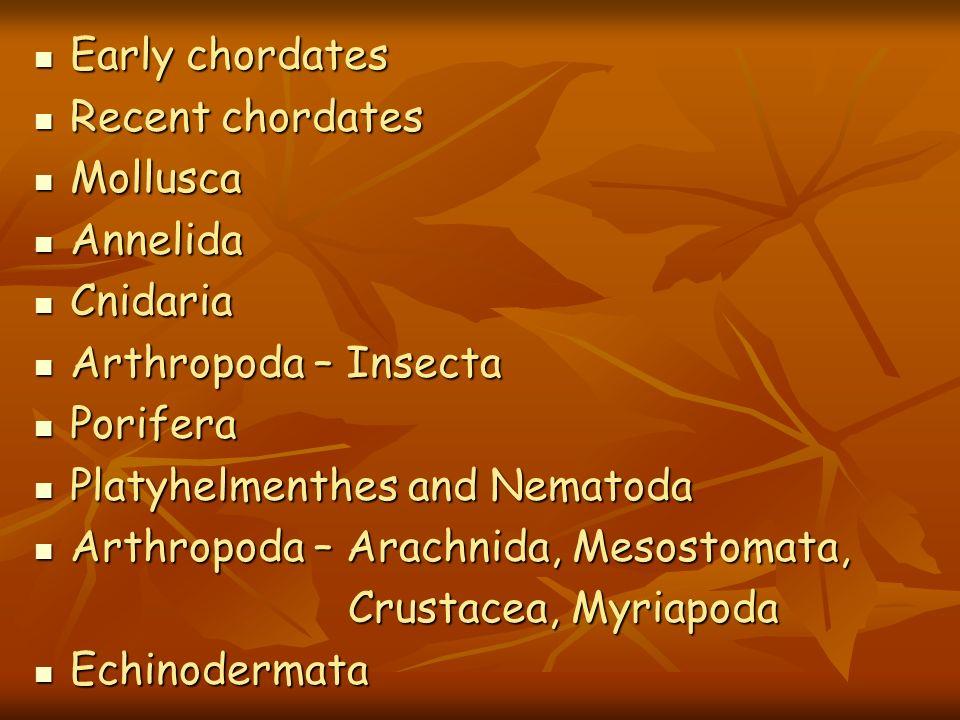 Early chordatesRecent chordates. Mollusca. Annelida. Cnidaria. Arthropoda – Insecta. Porifera. Platyhelmenthes and Nematoda.