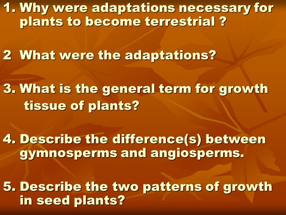 1. Why were adaptations necessary for plants to become terrestrial
