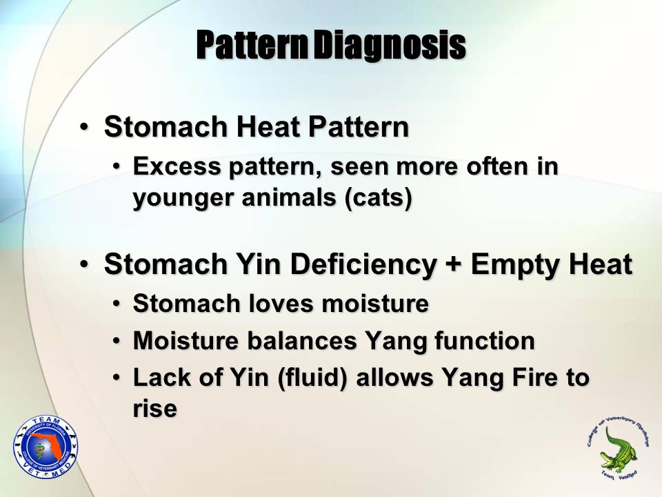 Pattern Diagnosis Stomach Heat Pattern