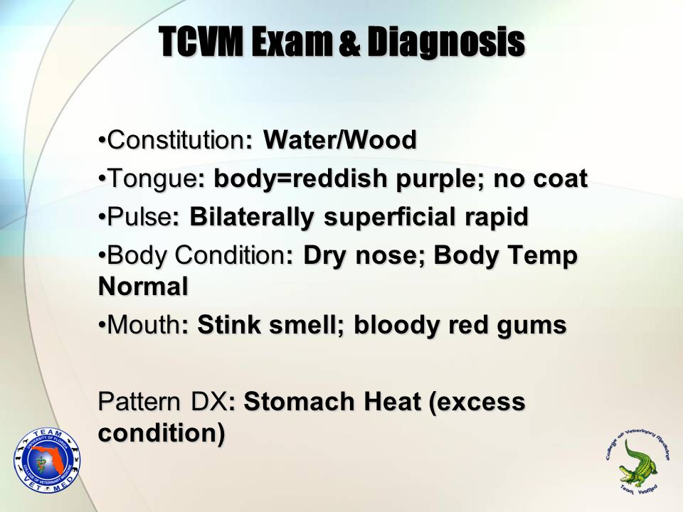 TCVM Exam & Diagnosis Constitution: Water/Wood