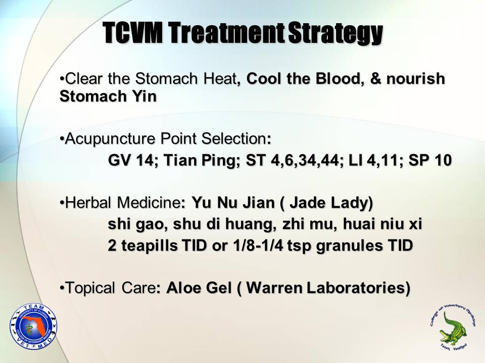 TCVM Treatment Strategy