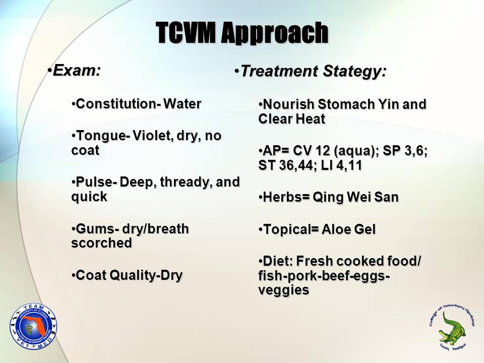 TCVM Approach Exam: Treatment Stategy: Constitution- Water