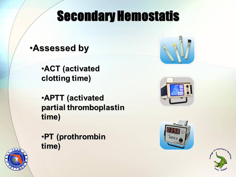 Secondary Hemostatis Assessed by ACT (activated clotting time)