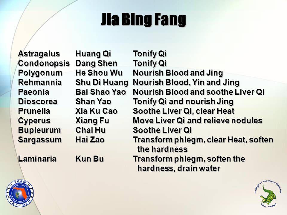 Jia Bing Fang Astragalus Huang Qi Tonify Qi