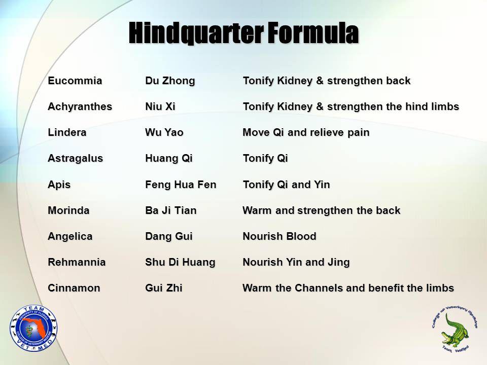 Hindquarter Formula Eucommia Du Zhong Tonify Kidney & strengthen back