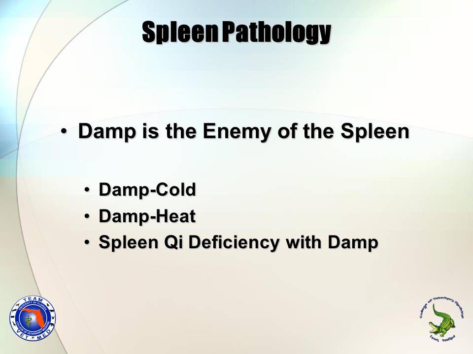 Spleen Pathology Damp is the Enemy of the Spleen Damp-Cold Damp-Heat